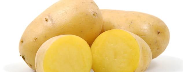 productos-patata-actiture-inicio